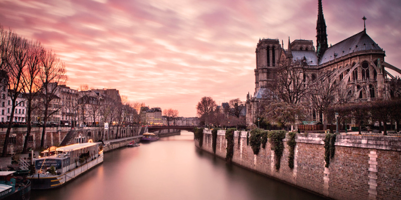 search results for paris photography